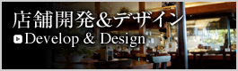 develop_design